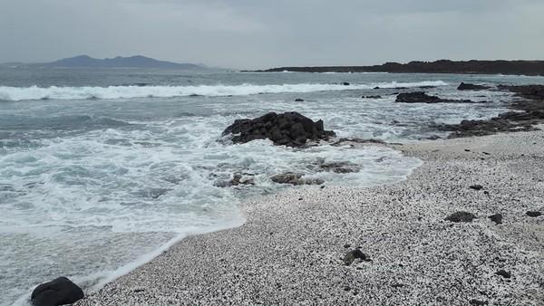 Bersatu dengan pasir pantai hitam dan batuan vulkanik, terumbu karang itu tak ubahnya dengan popcorn berwarna putih (Facebook)