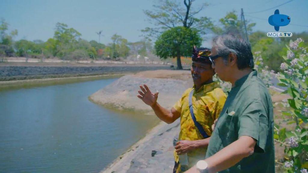 Pejuang Lingkungan Ubah Tempat Wisata Jadi Lahan Tumbuh Anggur Laut