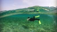 Puteri Indonesia 2020, Jihan Almira menjelajahi pulau Derawan. Perjalanan ini merupakan projek Jihan bersama pesona Indonesia (Jihane Almira/Instagram)