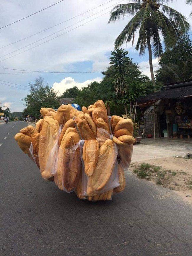 Roti Raksasa Vietnam