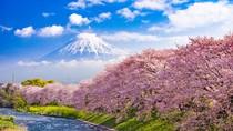 Gunung Fuji Nggak ke Mana-Mana, Sabar Saja Sampai Corona Usai