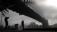 Jembatan kebanggaan Australia tersebut nyaris tak terlihat. Menurut Guinness World Records, jembatan ini adalah yang terlebar di dunia, sekaligus sebagai jembatan lengkung berkerangka besi tertinggi di dunia dengan puncaknya berdiri 134 meter di atas permukaan pelabuhan.