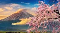 Jepang Akan Gratiskan Setengah Biaya Liburanmu!