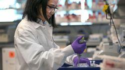 Buat Terobosan, China Kembangkan Vaksin Corona dari Sel Serangga