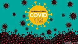 Update Corona di RI 29 Mei: Kasus Positif 25.216, Sembuh 6.492, Meninggal 1.520