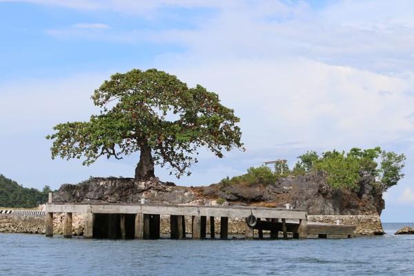 Saking banyaknya kambing, ada sebuah pulau kecil di dekat Arguni yang diberi nama Pulau Kambing. (dok Istimewa/Hari Suroto)