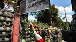 Di Bogor Ada Kampung Siaga Pangan COVID-19 Lho