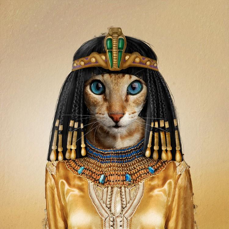 Emesh, Anjing-Kucing Disulap Jadi Bob Marley sampai Michael Jackson