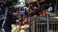 Pedagang daging dan ayam kampung juga banjir pesanan.