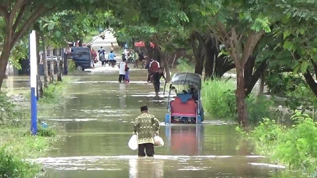 Banjir Merendam Rumah hingga Sawah Warga di Polman