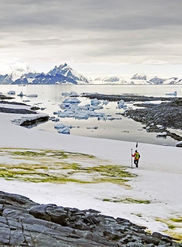 Pertumbuhan ganggang hijau akan meningkat seiring dengan adanya kenaikan suhu bumi. (AFP/Matt Davey)
