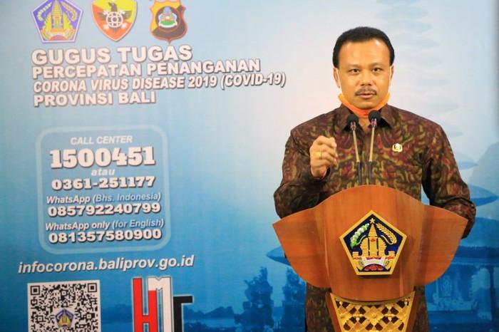Sekretaris Daerah (Sekda) Bali Dewa Made Indra (Dok Istimewa)
