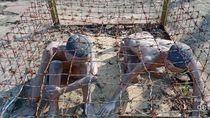 Ini Penjara Komunis dengan Hukuman Tersadis