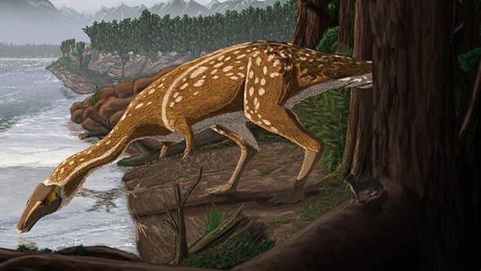 Dinosaurus: Elaphrosaurus ompong berusia 110 juta tahun ditemukan di Australia