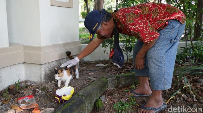 Relawan sisir kucing liar di sejumlah tempat di Solo, Senin (25/5/2020).