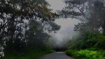 BMKG: Selama 3 Hari, 9 Daerah di Sulteng Akan Alami Hujan Lebat