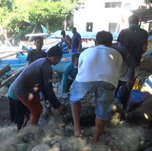 Sederet Vitamin Jokowi Buat Petani dan Nelayan, Apa Saja?