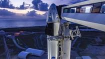 Kisah Iron Man Bangun SpaceX Hingga Bawa Manusia ke Antariksa