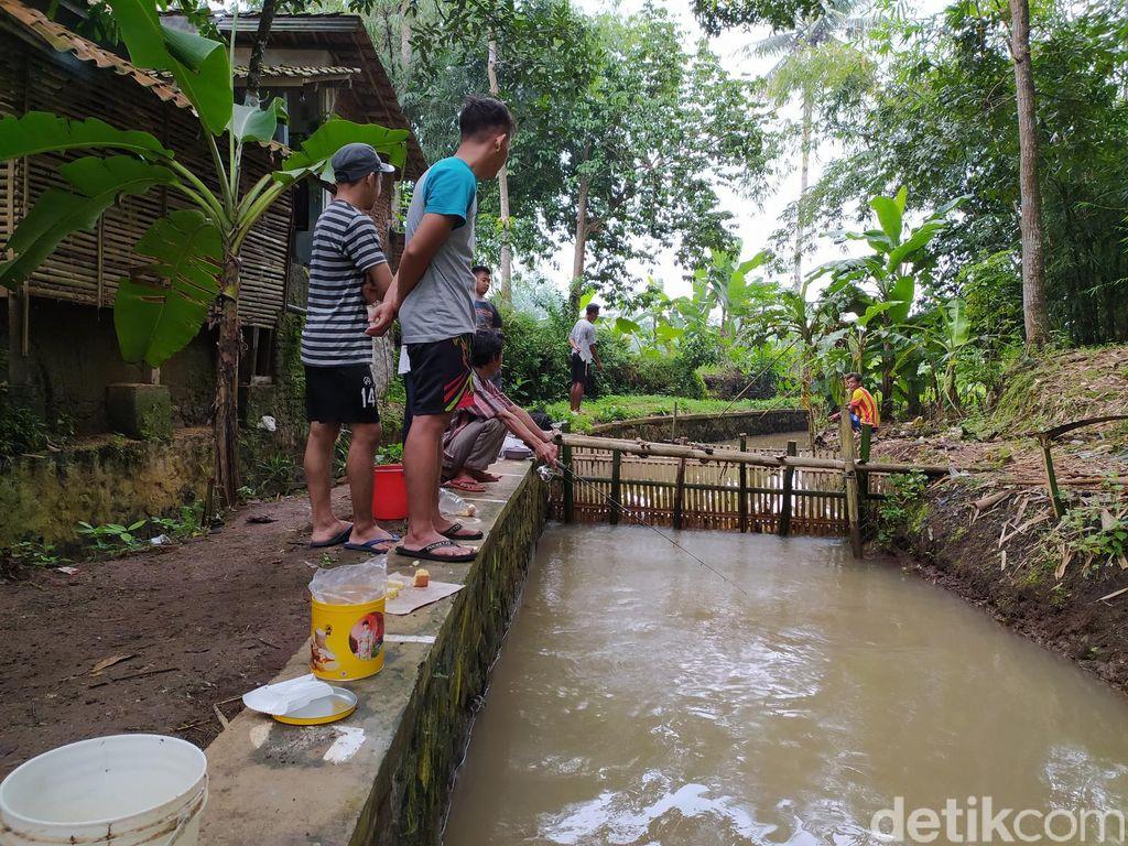 Memancing saluran Irigasi di Linggasari, Ciamis