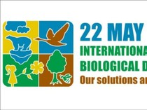 Biodiversitas, Ekosentrisme, dan Kemanusiaan