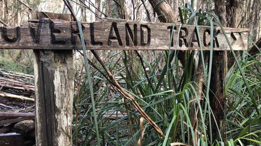Overland Track di Cradle Mountain Lake St Clair National Park, Tasmania, Australia