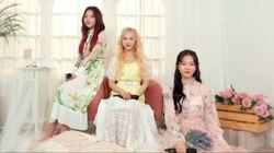Ketika Girlband K-Pop BVNDIT Cover Lagu Rayu Marion Jola