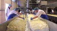 Imbas Corona, Ratusan Pabrik Keju Parmesan Terpaksa Kurangi Produksi