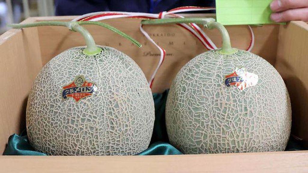Dampak COVID-19, Melon Yubari Tak Lagi Jadi Buah Termahal