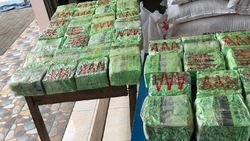 Tangkap Kurir Narkoba di Cikarang, BNN Sita Sabu-Ekstasi Seberat 100 Kg