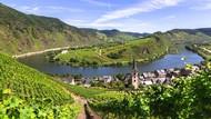 Hilangnya Patung Kayu Penis Raksasa di Pegunungan Jerman