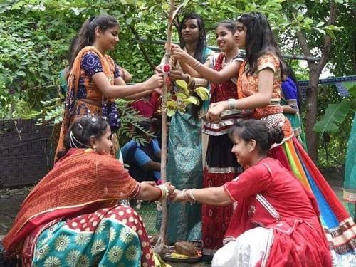 Setiap 1 Bayi Lahir Desa Ini Tanam 111 Pohon, Hasilnya Hutan Menakjubkan Ini