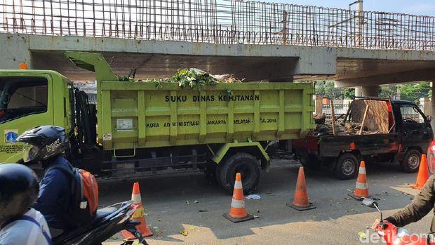 Suku Dinas Kehutanan Jaksel menebang pohon pagi hari dan menimbulkan kemacetan di Lentang Agung