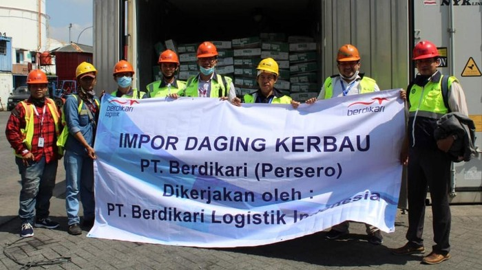 Daging kerbau Indonesia mulai masuk Indonesia. Shipment pertama telah masuk ke Indonesia melalui Pelabuhan Tanjung Priok sebanyak 672 ton.