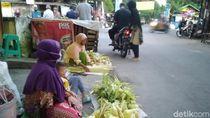 Berburu Janur Jelang Lebaran Ketupat di Semarang