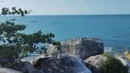 Ini Asupan Vitamin Sea dari Pantai Bangka