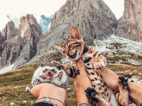 Menurut pemilik mereka, Talitha Girnus, kedua hewan ini tidak bisa dipisahkan. Ke mana pun Herbee pergi, Audree pun ikut pergi. (mr.Pokee/Instagram)