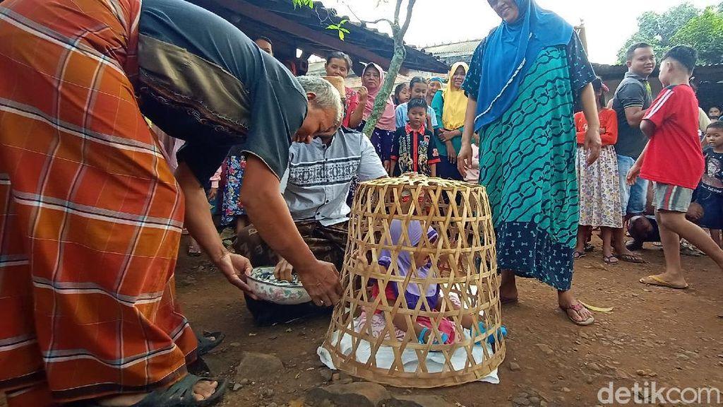 Melihat Mudun Lemah, Tradisi Bagi Bayi yang Baru Bisa Berjalan