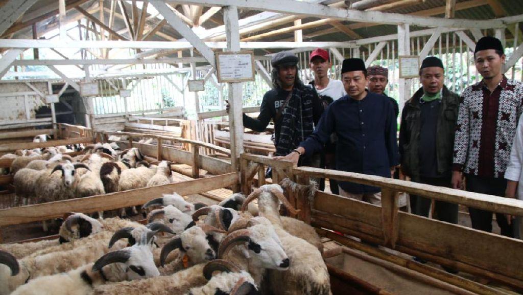 PKB Dorong Ponpes di Jabar Optimalkan Peternakan di Tengah Pandemi