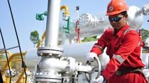 Pertamina Sepakati Penjualan Gas 318 BBTUD untuk Industri Domestik