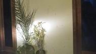 Wanita di Ponorogo yang Suaminya Bunuh Diri Gelapkan Uang Rp 5,8 M