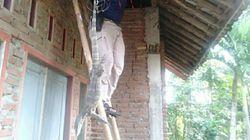 Biawak Ngumpet di Atap Rumah Warga Ciamis