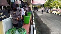 Polisi di Sulsel Budidaya Ikan Lele dan Hidroponi Untuk Stok Pangan