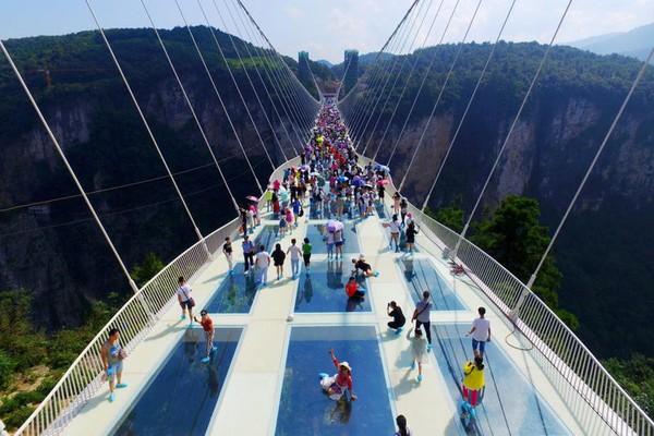 Di jembatan kaca ini banyak petugas yang akan membantu menuntun para pengunjung yang tidak sanggup melanjutkan perjalanan. Istimewa/dok. thetravelbrief.com