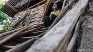 Kisah Nenek Hadi, Hidup Sebatang Kara di Gubuk Reyot