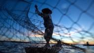 Pembudidaya Ikan di Ambon Tetap Cuan Selama Pandemi, Apa Rahasianya?
