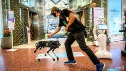 Cegah Corona, Robot Anjing di Mal Thailand Bagikan Hand Sanitizer