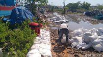 Antisipasi Banjir Rob Susulan Makin Tinggi, Pemkot Pekalongan Lakukan Ini