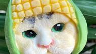 Gemas! Es Krim Ini Berbentuk Kucing dan Anjing Mungil
