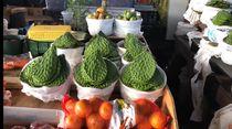 Borong Buah Kaktus dan Singkong di Pasar Tradisional Amerika