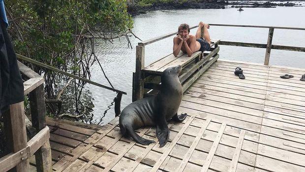 Pria bertemu satwa liar di Galapagos
